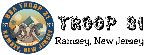 Troop 31 combined logo.png - 505 x 195